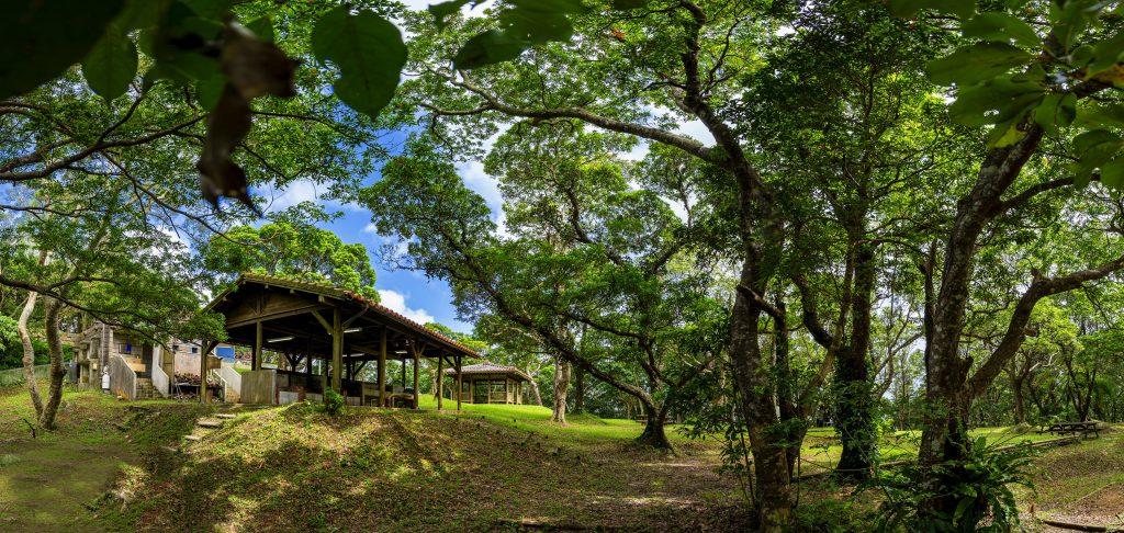 乙羽岳森林公園メインキャンプサイト